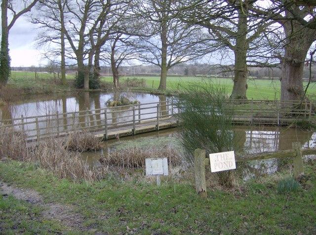 The Pond, Rushall Manor Farm