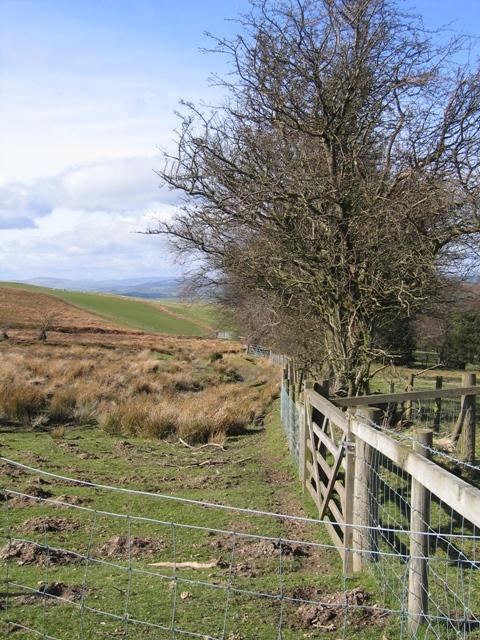 Open Access Boundary near Bryneglwys.