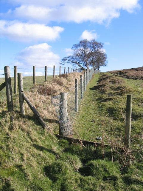 Open Access Boundary near Bryneglwys