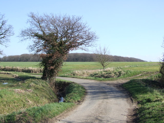 Start of Footpath on Bend