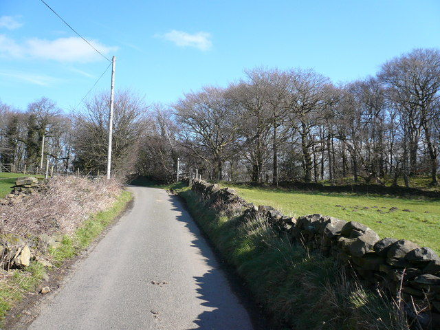 Bolehill Lane with Redcarr Hillside on Right