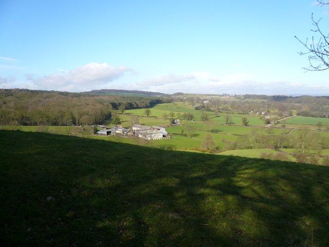 Bolehill Lane - View towards Farm and Ivyspring Wood