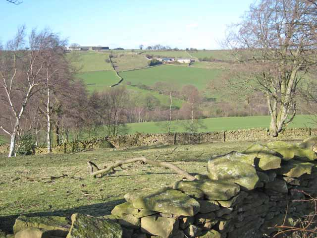 Browney valley
