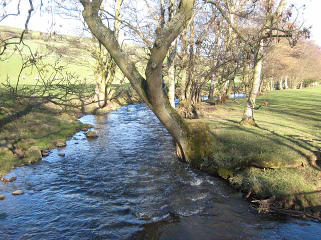 The River Browney