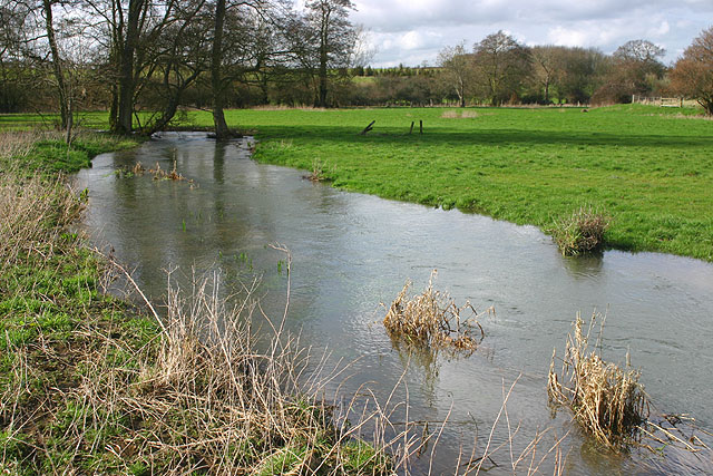 The River Dorn near Buswell's Thicket