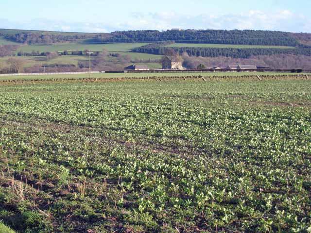Stobbilee Farm