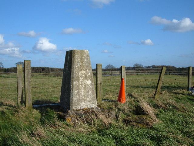 Brenkley Hill Trig Pillar