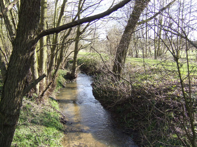 Byng Brook