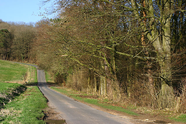 Wychwood Forest at Hatching Hill