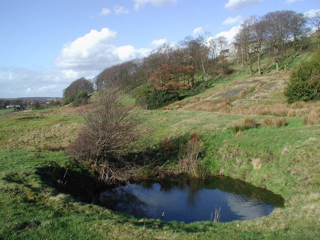 Cripple Croft Plantation, Denholme