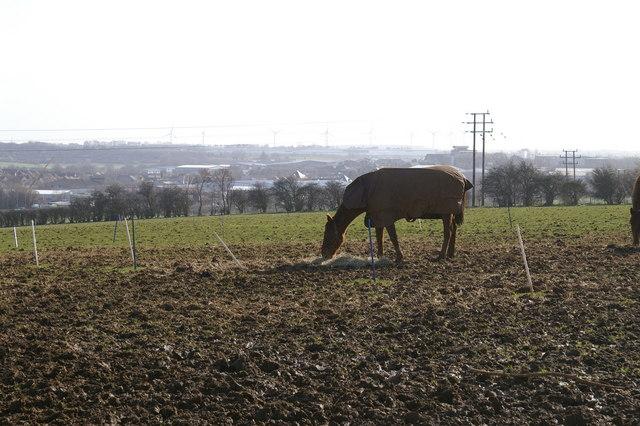 View across fields towards Burton Latimer