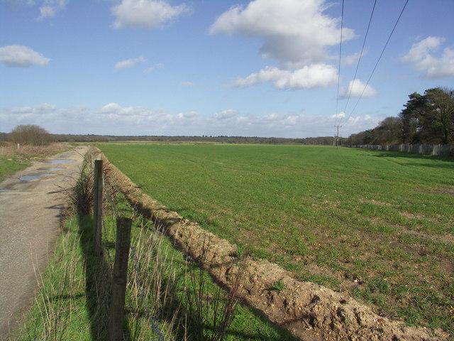 Fields north of Somerford