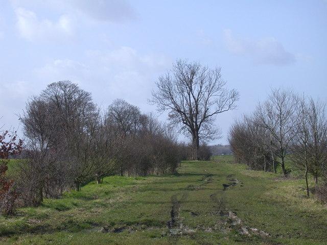 Bridleway near to Bar Hill, Cambridgeshire