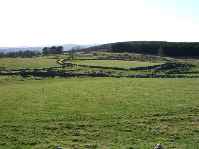 Fields with stone walls
