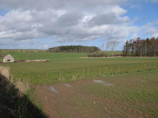 Fields and Plantations, Duddo