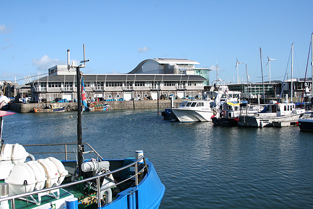 Plymouth: towards the National Marine Aquarium