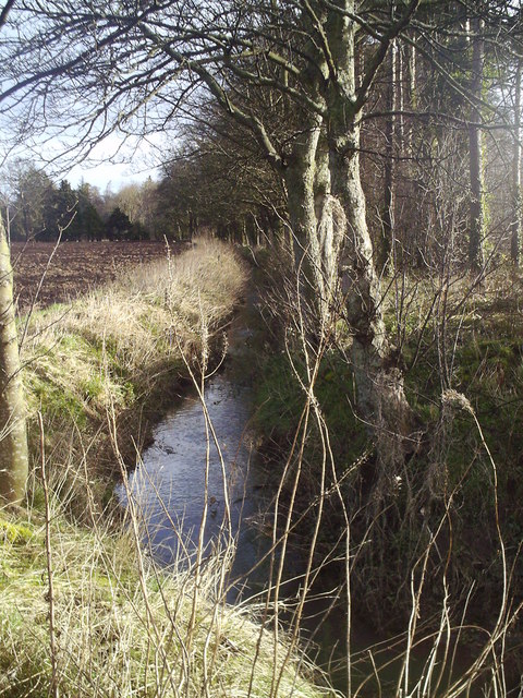 Drainage Ditch, Inchmartine