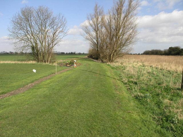 Green Grass Track