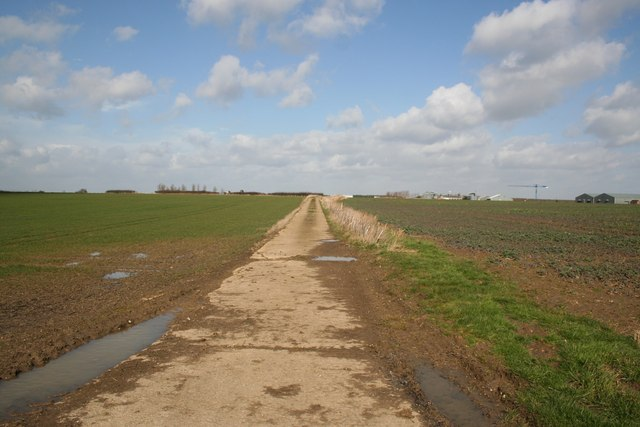 Track from Woolley's Lane