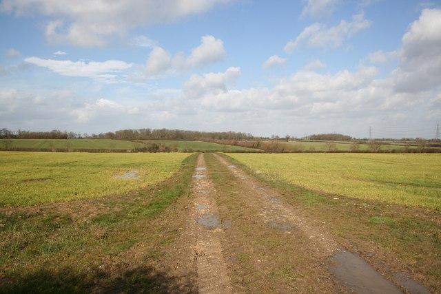 Bridleway to Dodsey Wood