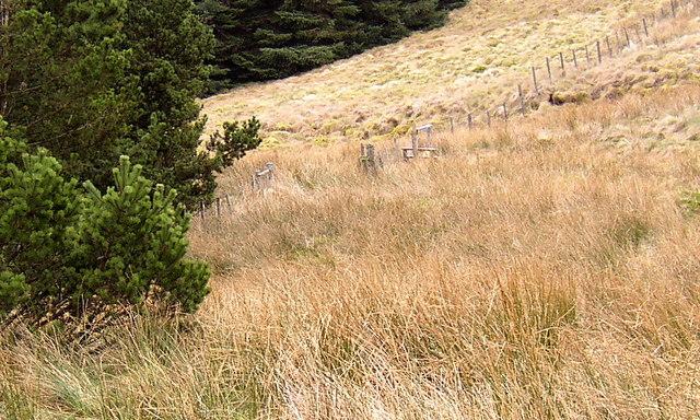 Stile on footpath from Kidland Forest onto Yarnspath Law