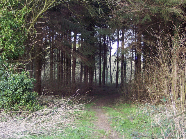 Footpath near Newtown