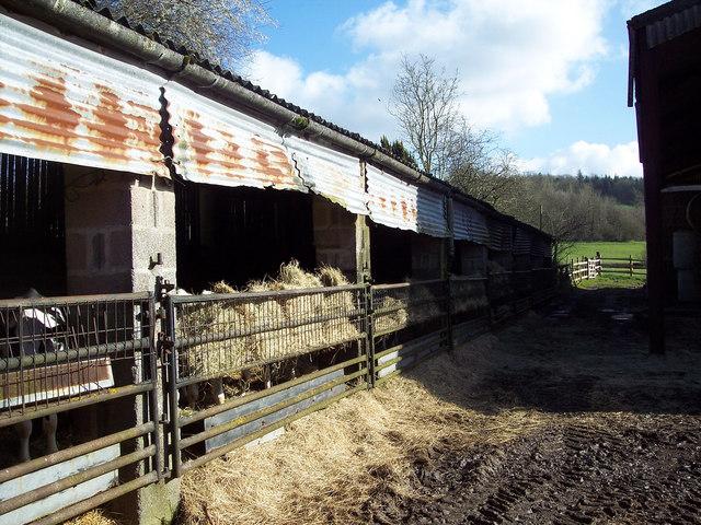 Buildings at Cool's Farm near Kinghay