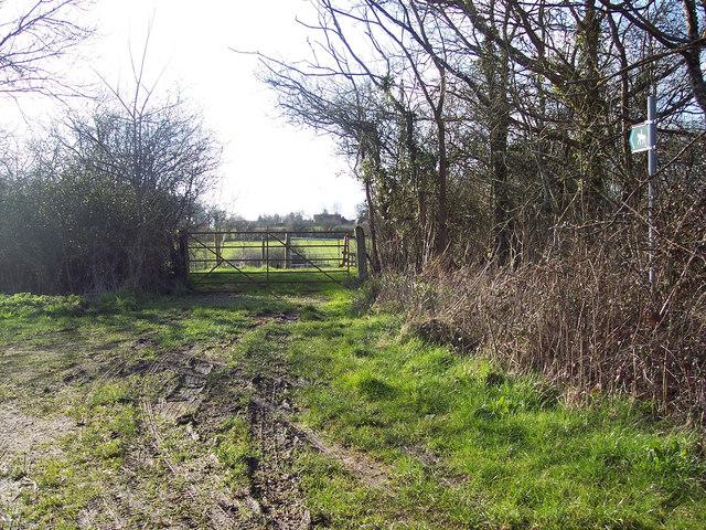 Bridleway near Summerleaze Farm, Kinghay