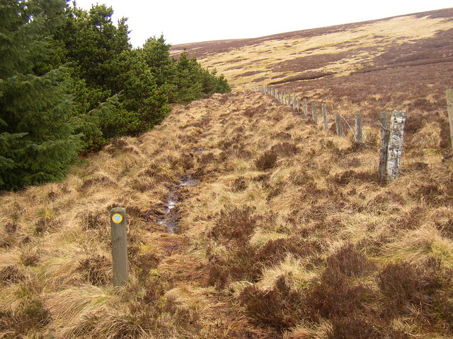 Bridleway south of Bloodybush Edge