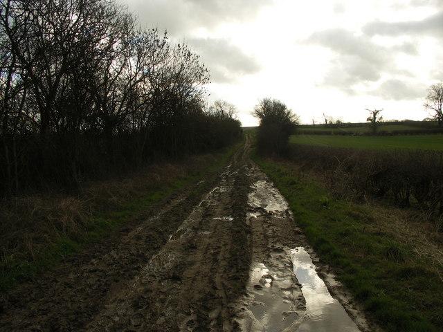 Uphill Muddy Track.
