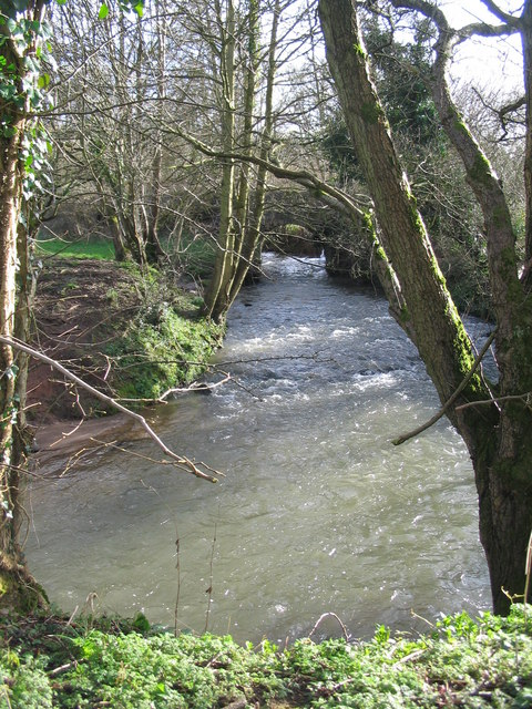 The Cam Brook