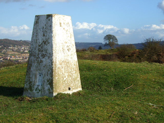 Oaker Hill Triangulation Pillar and Tree