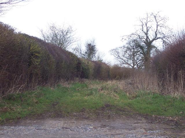 Footpath off Crate Lane, Sedgehill