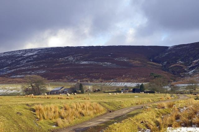 Fellside Farm