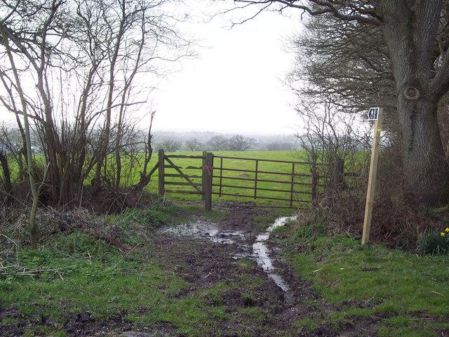 Footpath to Larkinglass Farm from Bridewell Lane