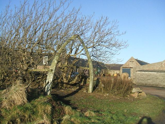 Colliehill Farm