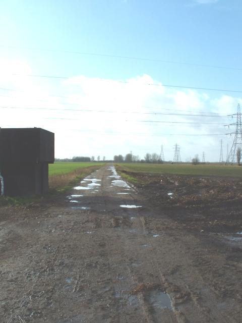 Bridleway near French's Drove, Walpole Marsh