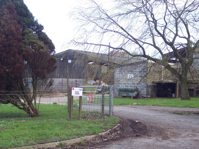 Hays Farm on the A350 near Sedgehill