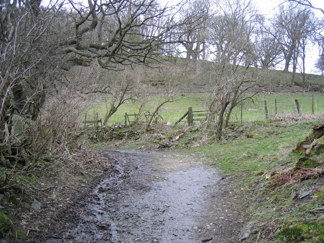Offas Dyke LDP and Stile