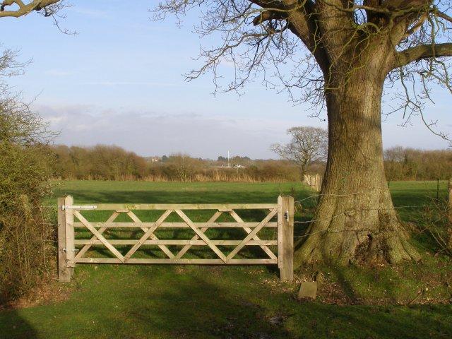 New gate near St Leonards, Beaulieu Estate