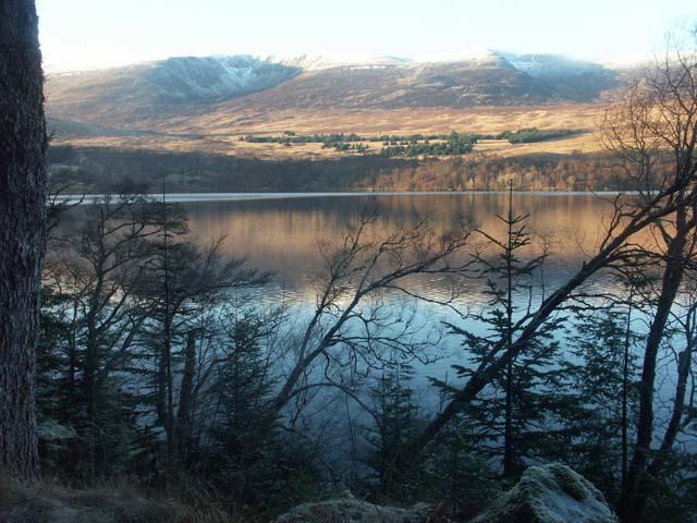 Loch Laggan south shore