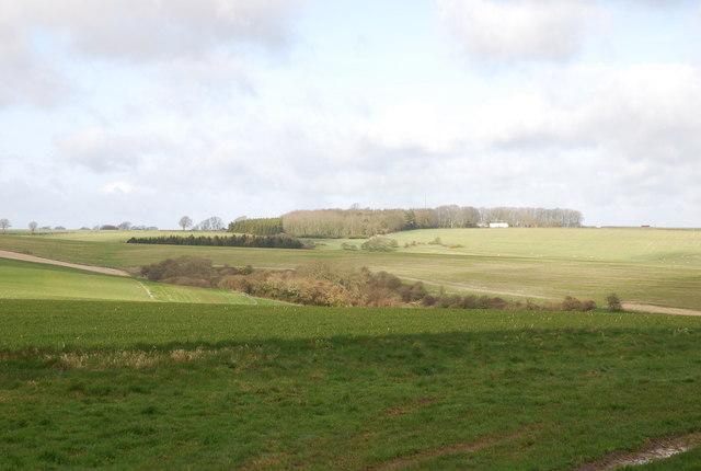 View across Croucheston downland