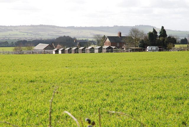 Rear of Croucheston Down Farm