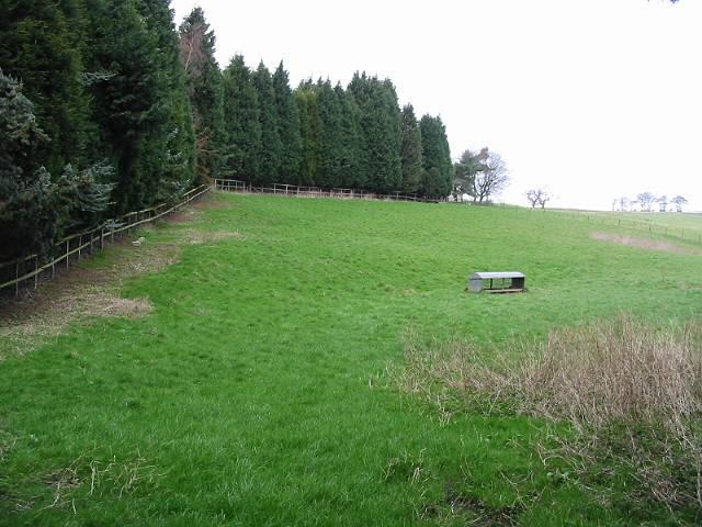 Field adjoining Bunkershill Farm