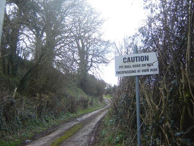 Track to Abernant Farm