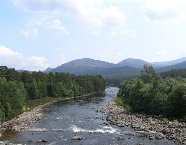 River Dee & the Ballochbuie Forest