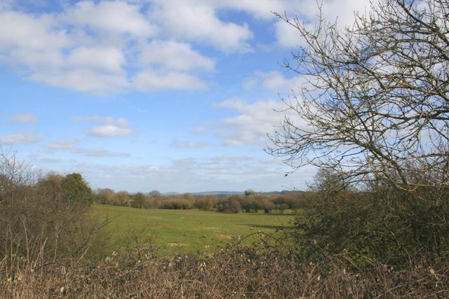 View from lane near Leighton