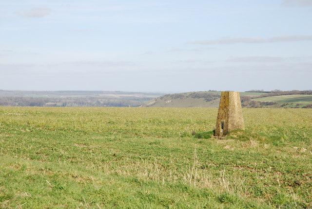 Trig Point above Sutton Down