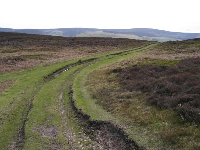 Track on Llantysilio Mountain