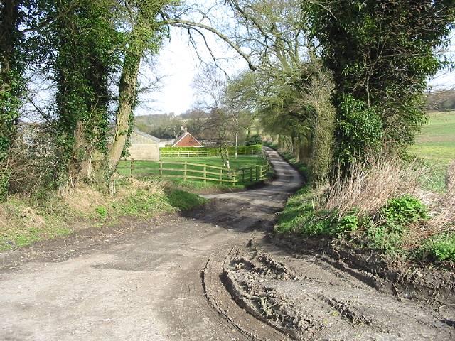 By-road near Shelvin Farm